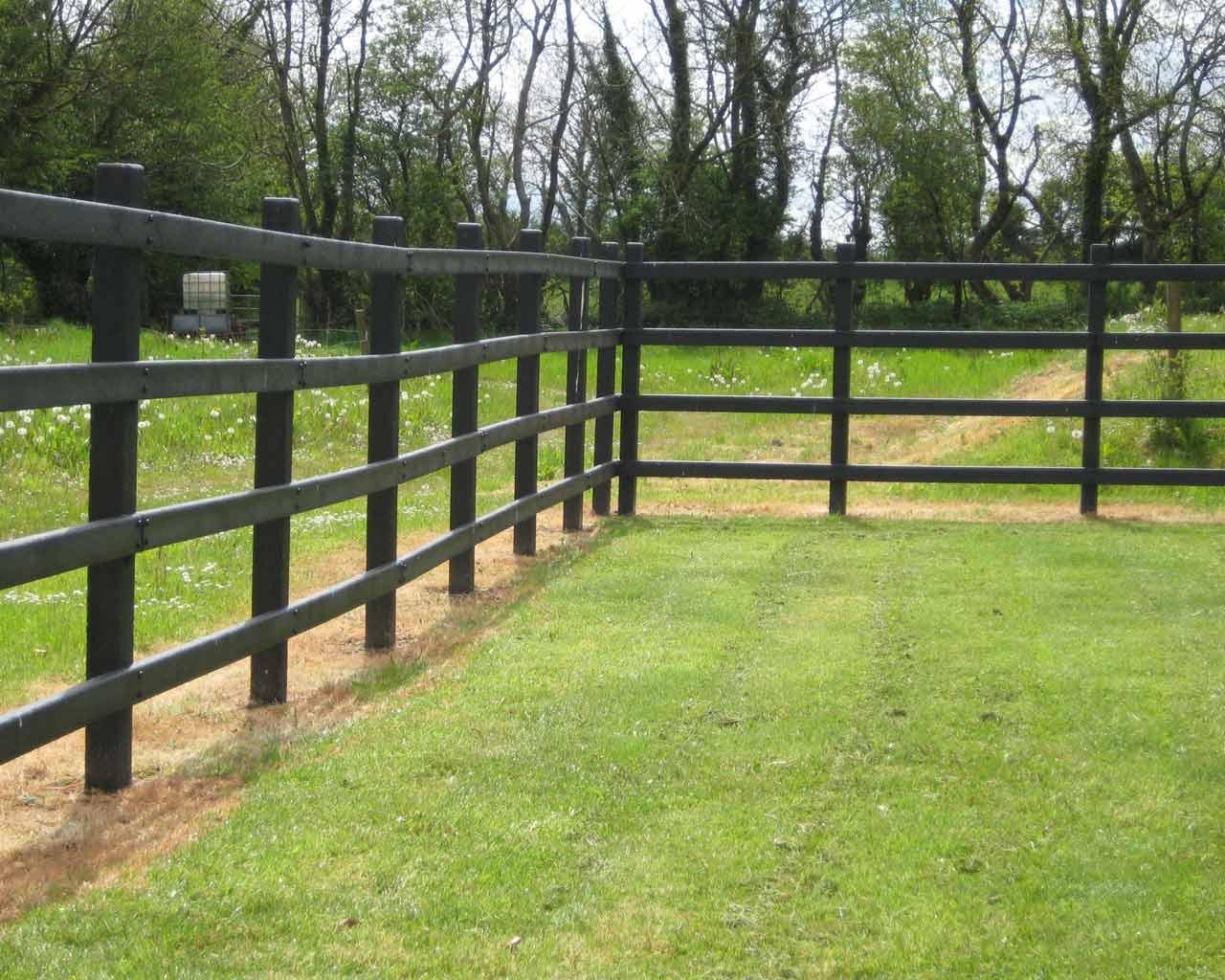 4 Rail Fencing